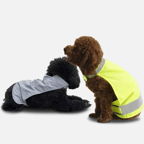 pet safety vest