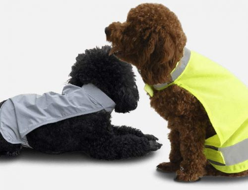 High Visibility Safety Vests for Pets